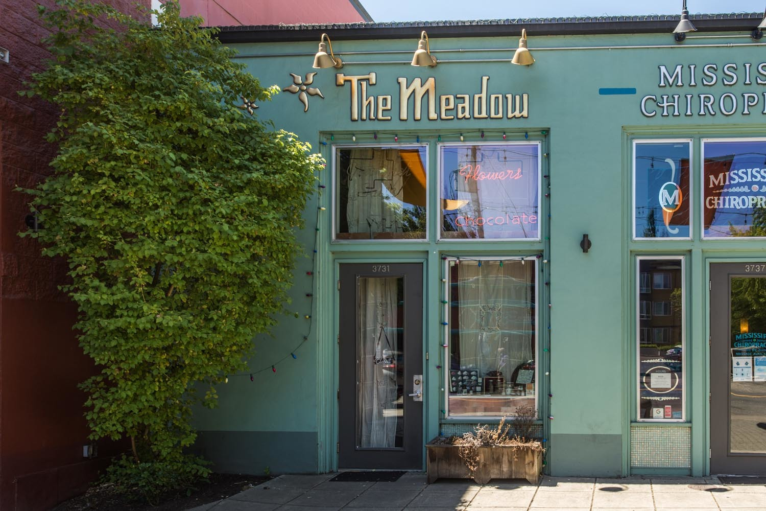 exterior of Tin Meadow teal storefront