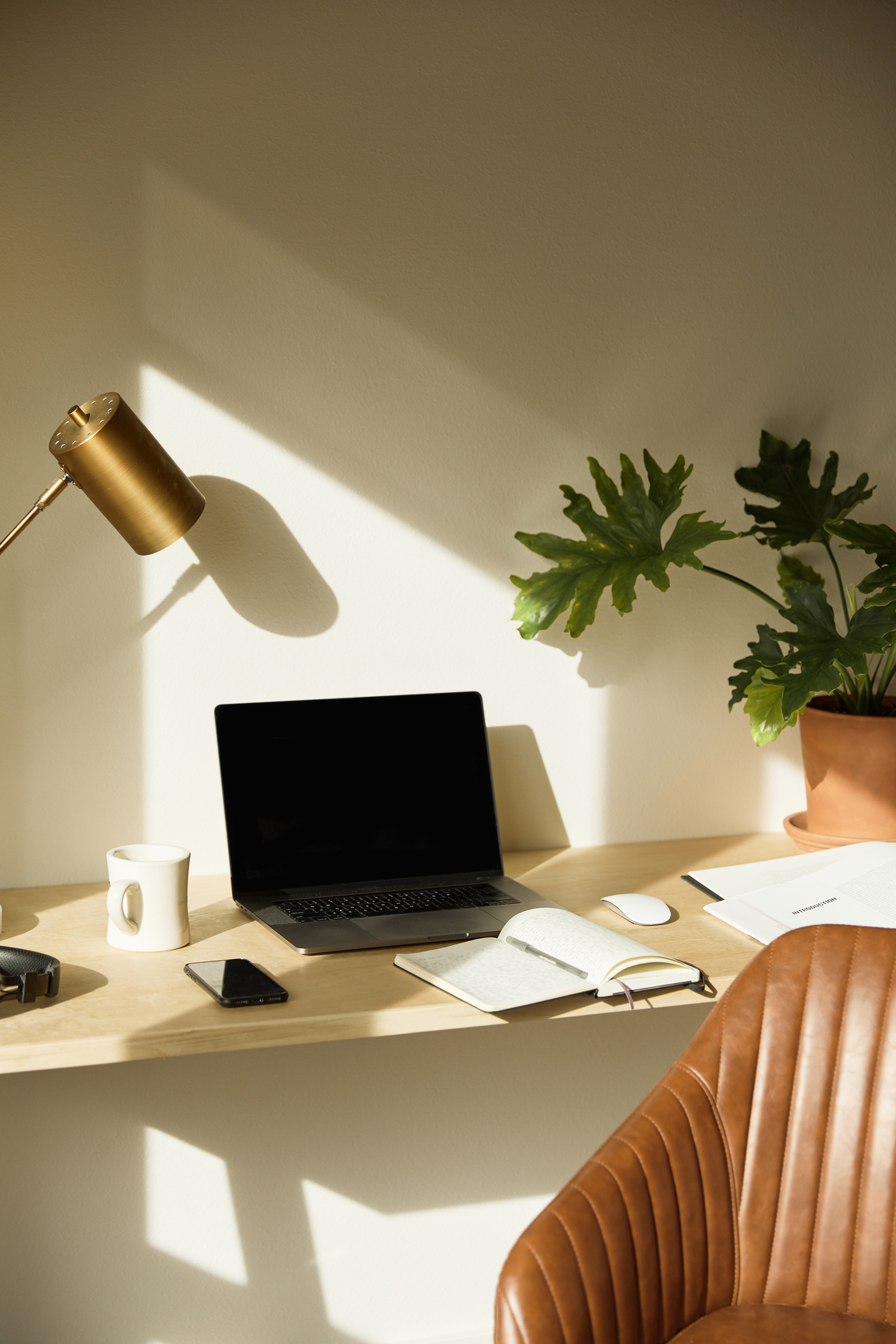 wooden design with laptop and plant