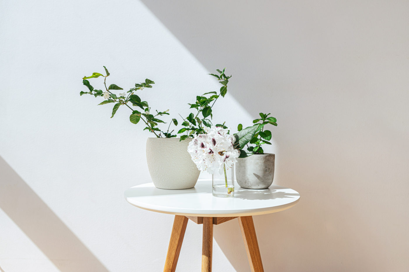 flowers in vases on white tabletop with wooden legs